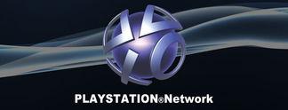 PlayStation-ID: Sony könnte euch eure Namen bald ändern lassen