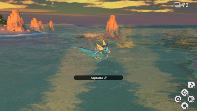 """Aquana auf der Strecke """"Riff (Abend)"""" in New Pokémon Snap."""