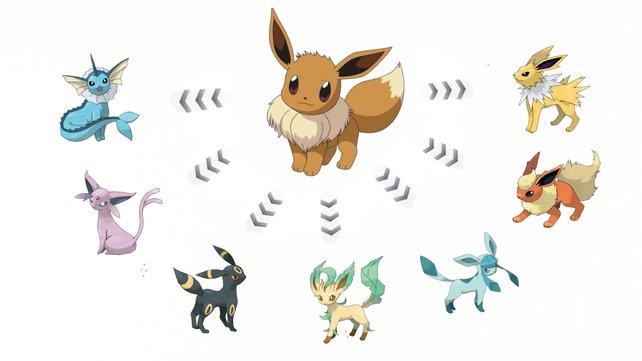 Das sind alle Entwicklungen von Evoli in Pokémon GO.