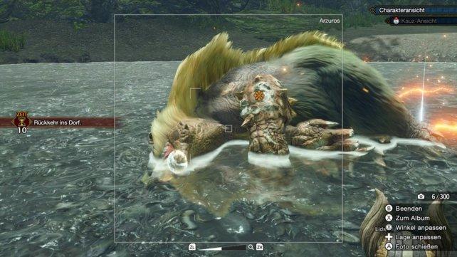 Während das Arzuros friedlich schläft, müsst ihr ein Foto für den Abschluss der Quest machen.