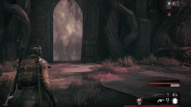 """Die typische Nebelwand eines bevorstehenden Bosskampfes. Dieses Element ist von den """"Dark Souls""""-Spielen bekannt."""