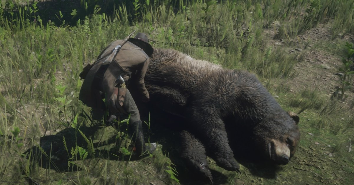 Red Dead Redemption 2 Alle Tiere