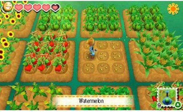 Die Felder sind begehrt. In Wettbewerben kämpft ihr um die Miete dieser nützlichen Quadrate.