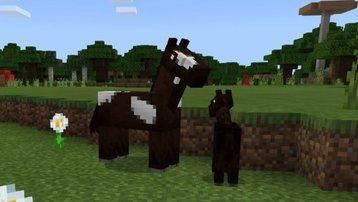 <span>Minecraft  </span> Alle zähmbaren Tiere