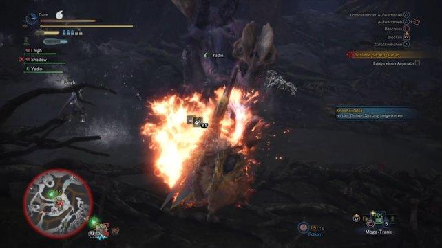 Mit Feuer ist nicht zu spaßen, also deckt euch für den Kampf mit Nullbeeren ein.