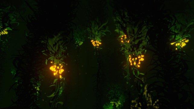 Schlingenpflanzensamenbüschel erkennt ihr nachts in Subnautica besonders leicht an der leuchtenden Farbe.