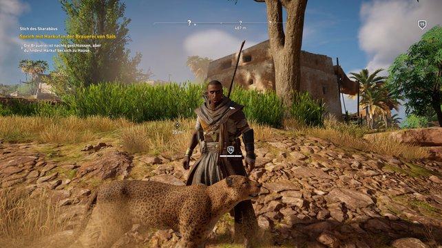 """Schaltet ihr die Fähigkeit """"Tier-Dompteur"""" frei, könnt ihr Raubkatzen, Hyänen, Nilpferde und Krokodile zähmen, die an eurer Seite kämpfen."""