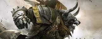 Guild Wars 2: Haus eines Fans brennt ab, Entwickler spendet Geld
