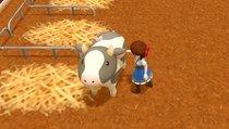 Harvest Moon: One World: Tipps zur Tagesroutine