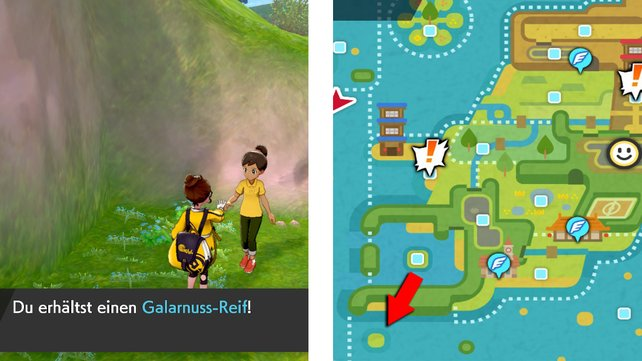 Ihr findet den weiblichen NPC, der euch einen Galarnuss-Reif flechtet, auf dieser Insel im Fitnessmeer.
