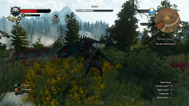 Witcher 3 Drache Spieletipps