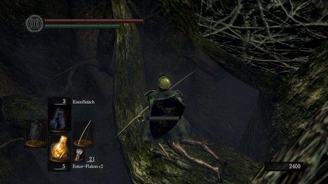 An der Stelle, wo die Leiter auf die Ebene mit den letzten Basilisken führt, kann man durch ein Loch nach unten fallen lassen, auf einen Ast mit einem Item drauf. Von hier kann man sie mit etwas Mühe im Fernkampf niederstrecken.