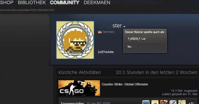 Auf den Profilen eurer Steam-Freunde könnt ihr nachschauen, welche Spitznamen sie bisher genutzt haben.