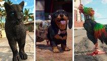 Far Cry 6: Alle Amigos bekommen - So schaltet ihr alle 5 Begleiter frei