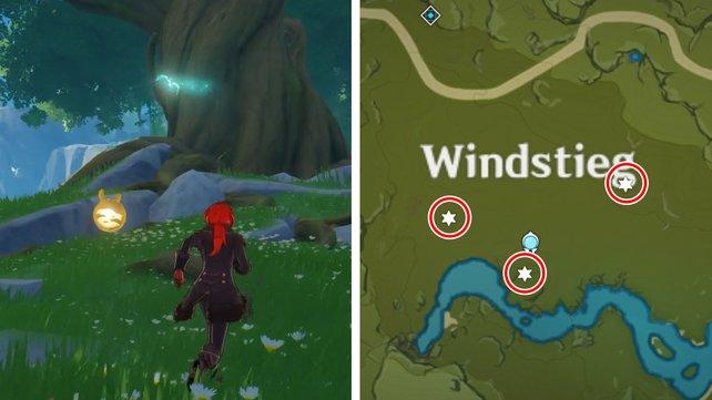 Beim Windstieg könnt ihr drei Kristallschmetterlinge fangen. Teleportiert euch einfach zur Statue der Sieben im Gebiet.