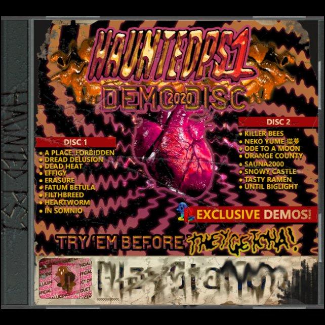 Haunted: Das Cover-Design der Demo-Disc kann aus verschiedenen Gründen erschrecken.