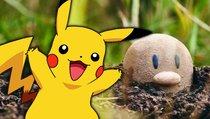 <span>Pokémon-Freizeitpark:</span> Erlebt eure Lieblingsmonster hautnah