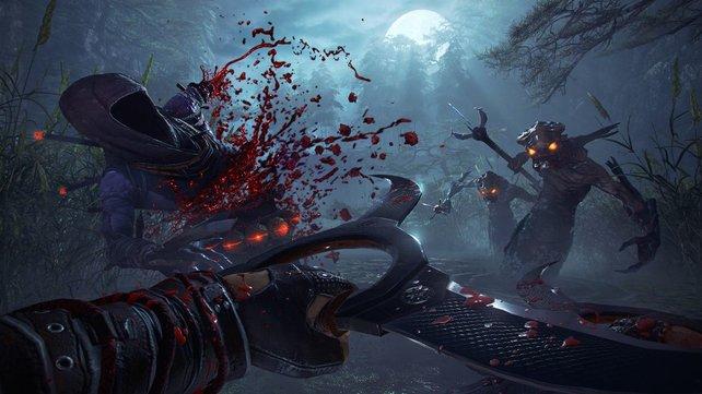 Im Mehrspieler-Modus entfaltet Shadow Warrior 2 nochmal mehr Spielspaß.