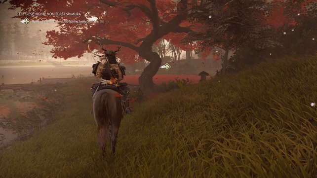 Reist zum Westufer des Omi-Sees und begebt euch hier zum runden Platz unter dem rotblättrigen Baum.