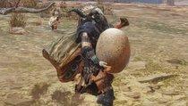 Monster Hunter Rise: Rhenoplos-Eier, Garwa-Eier und Edle Wyvern-Eier finden