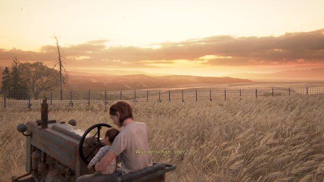 """Geht nach draußen zum Traktor und sammelt hier """"Ollie"""" ein. Danach könnt ihr die traumhaft schöne Landschaft im goldenen Licht bestaunen."""