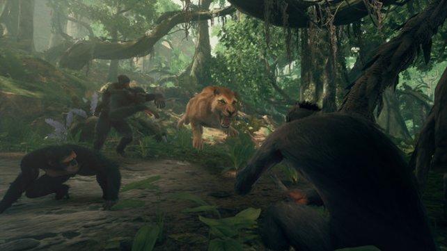 Kümmert ihr euch in Ancestors: The Humankind Odyssey nicht um die Blutungen eurer Affen, werden sie sterben.