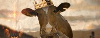 Easter Egg der Woche #5 - Kühe in Diablo 2 (mit Video)