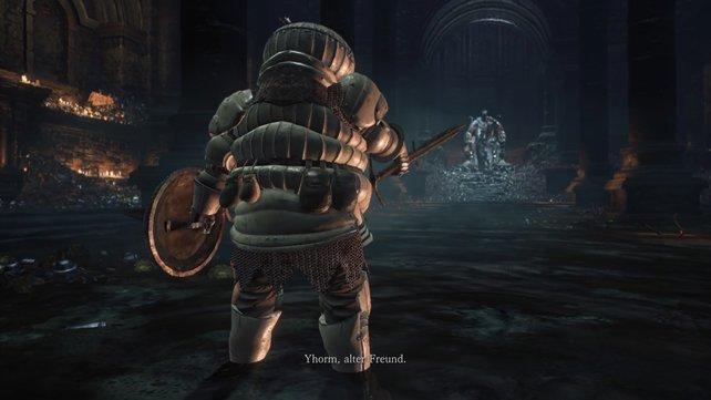 Der Zwiebelritter fordert seinen alten Freund zum Kampf.