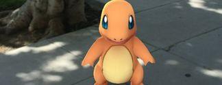 Pokémon Go: Das passiert, wenn dein Haus eine Arena wird