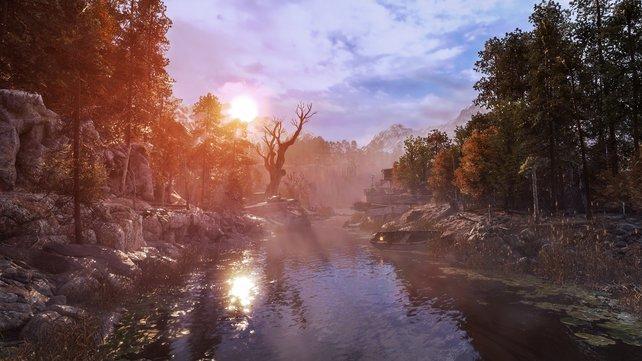 Selbst in der desolaten Wildnis findet ihr noch schöne Momente.
