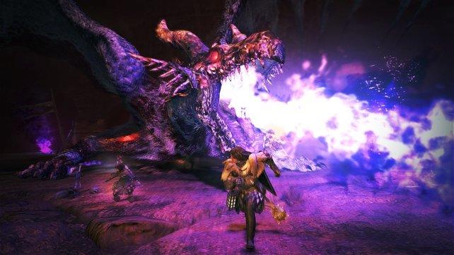 In Dragon's Dogma kämpft ihr unter anderem gegen die namensgebenden Drachen.