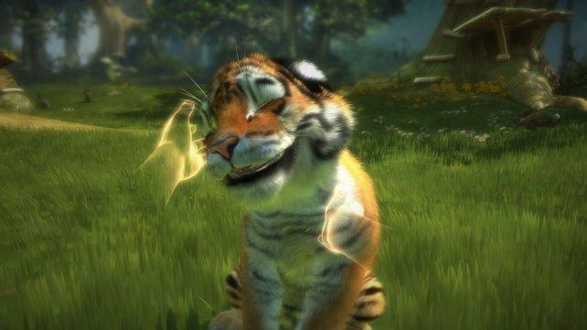 So niedlich waren wilde Raubkatzen noch nie.