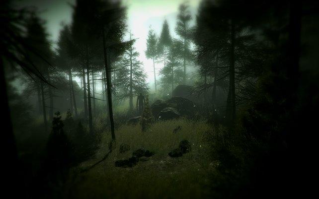 """""""Ein Männlein steht im Walde, ganz still und stumm ..."""""""