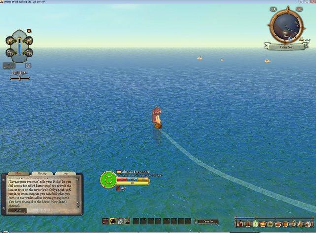 Auf offener See tummelt sich so einiges. Von NPC Händlern bis zu Spielerpiraten ist alles vertreten.