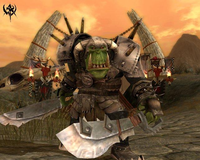 Ein kampferprobter Ork in voller Montur