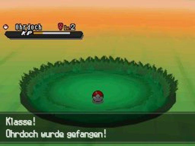 Team Plasma will weiterhin eure Pokémon klauen, die ihr eigenhändig gefangen habt. Eine Frechheit!
