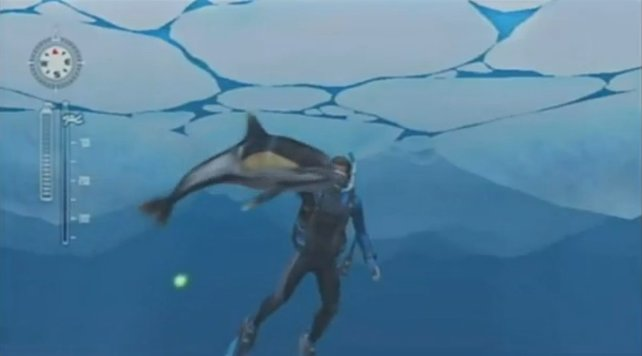 Beim Tauchen im kalten Eismeer sehr kräftesparend: ein Delphin als Zugtier!