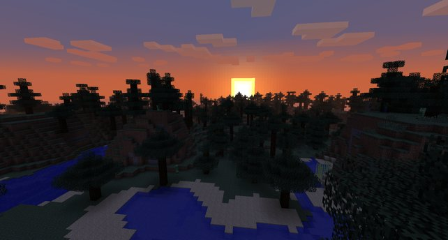 Sonnenaufgang in einem Wald-Biom.