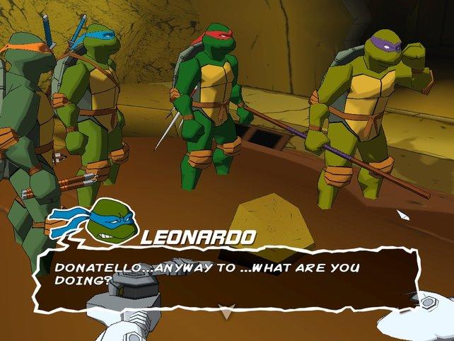 Die Turtles am Überlegen