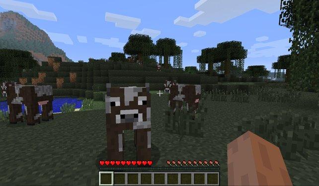 Minecraft Spielen Deutsch Minecraft Verkaufte Spiele Bild - Minecraft verkaufte spiele
