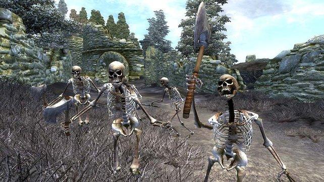 Rollenspiele sind ohne Skelette undenkbar