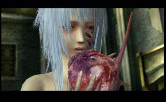 Nur Monsterfleisch kann Helenas Fluch brechen.
