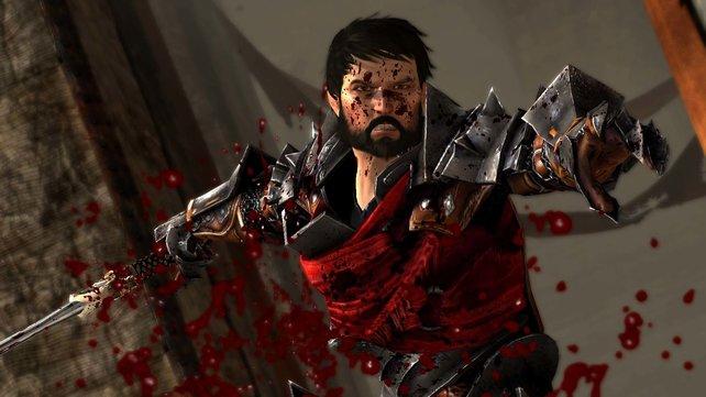 Champion Hawke: Er fürchtet weder Tod noch Teufel und mag Eingeweide.