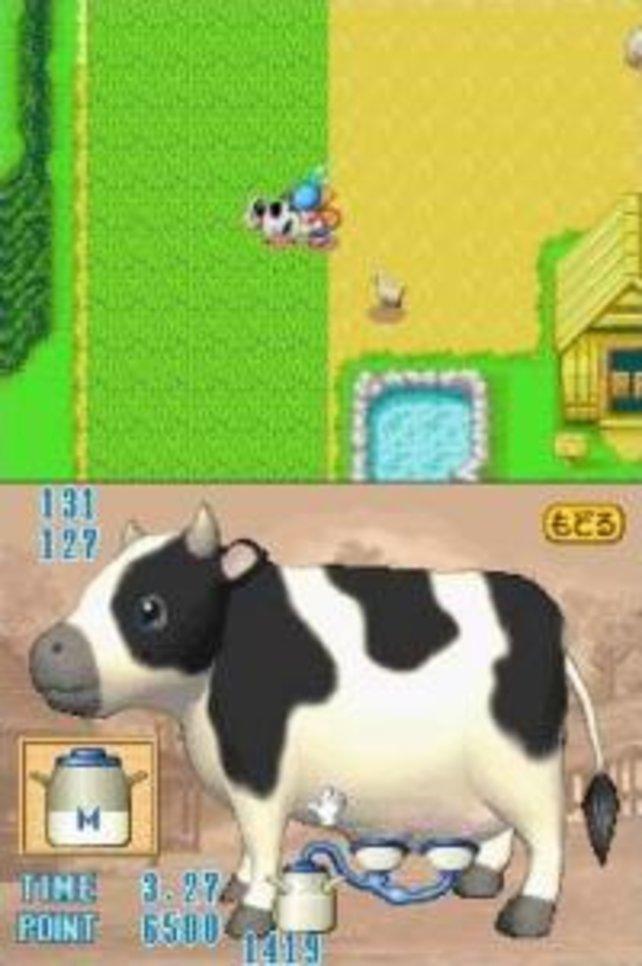 Die Kühe sind in Harvest Moon nicht nur Zierde, ihr müsst sie auch melken.