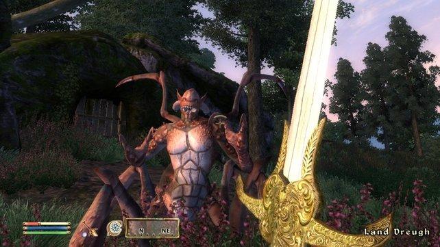 Obwohl Vorgänger Oblivion bereits gut aussieht, versprechen die Entwickler noch bessere Grafik für Skyrim.