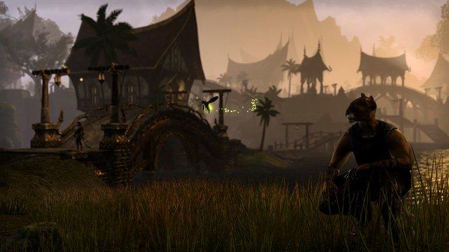 Ingesamt neun Provinzen gibt es in The Elder Scrolls Online.