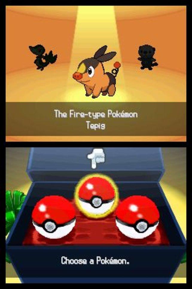 Hier müsst ihr euch für euer Starter-Pokémon entscheiden.