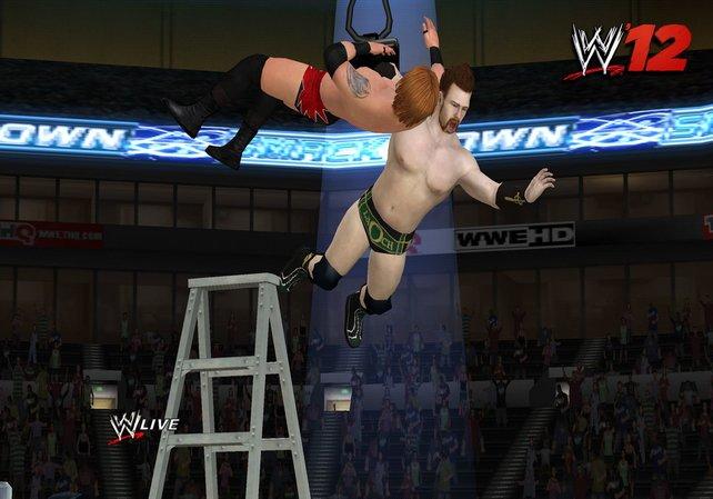 In WWE '12 schickt ihr Gegner auch aus großer Höhe auf die Bretter.
