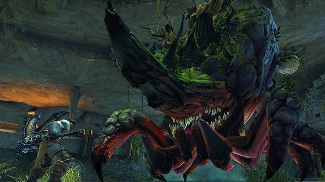 Im Bosskampf betäubt ihr die Riesenpflanze Karkinos, bevor ihr sie erledigen könnt.