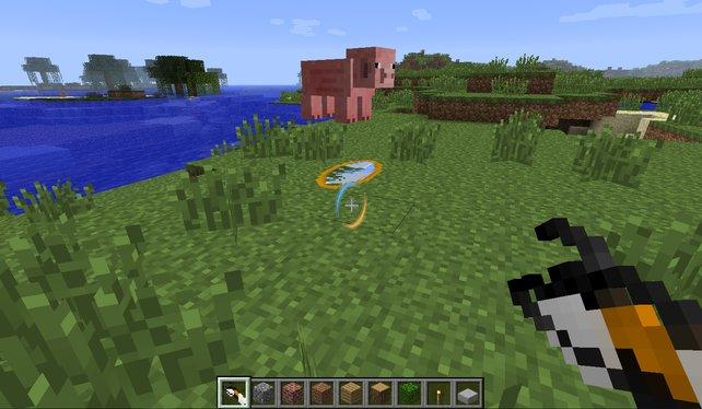 Lustig: ein Schwein mittels zweier Portale auf dem Boden in einer Endlosschleife hin und her teleportieren lassen.